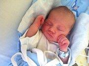TOMÁŠ MANHART, NOVÉ STRAŠECÍ. Narodil se 22. prosince 2017. Po porodu vážil 2,93 kg a měřil 48 cm. Rodiče jsou Michaela Jelínková a Petr Manhart. (porodnice Kladno)