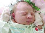 Dora Kašparová, Praha. Narodila se 23. dubna 2012, váha 3,28 kg, míra 50 cm. Rodiče jsou Jana a Jaromír Kašparovi. (porodnice Kladno)
