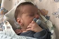 JAN PERGLER, OLOVNICE. Narodil se 18. dubna 2019. Po porodu vážil 3,6 kg a měřil 51 cm. Rodiče jsou Michaela Perglerová a Jan Pergler. (porodnice Slaný)