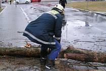Naposledy zasáhla vichřice region na počátku března. Hasiči tehdy nejčastěji vyjížděli k odstraňování padlých stromů přes silnice, elektrické a telefonní vedení a poničené zaparkované automobily
