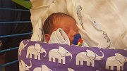 BRYAN BISCHOF, SLANÝ. Narodil se 29. října 2018. Po porodu vážil 3 kg a měřil 48 cm. Rodiče jsou Maria Bischofová a Ladislav Herák. (porodnice Slaný)