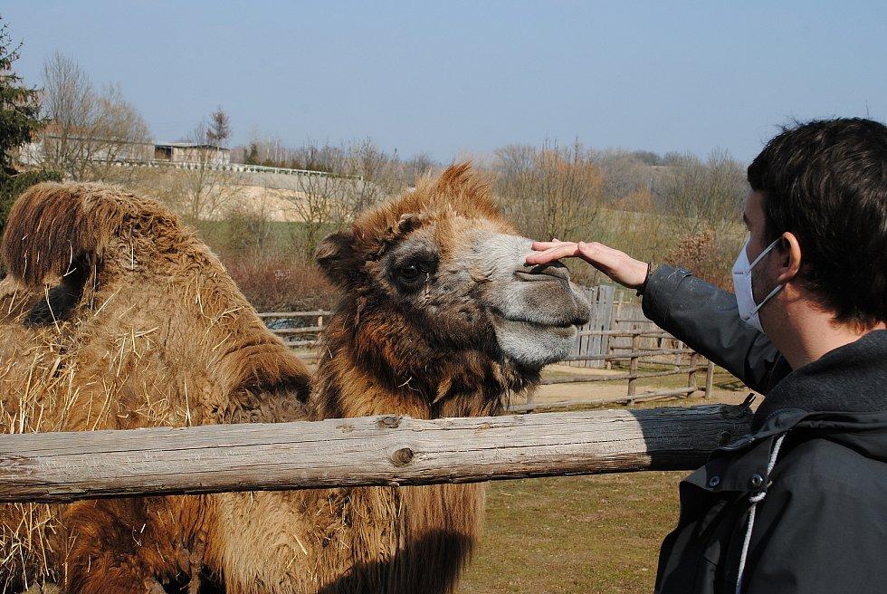 Zoopark Zájezd na Kladensku.