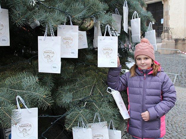 VÁNOČNÍ STROM Splněných přání stojí na náměstí Starosty Pavla.