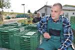 Odsouzení z věznice Vinařice v práci.