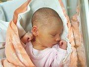 SOFIE RÜCKLOVÁ, CHRABERCE. Narodila se 26. listopadu 2018. Po porodu vážila 3,08 kg a měřila 50 cm. Rodiče jsou Jana Kolářová a Roman Rückl. (porodnice Slaný)