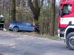 Dopravní nehoda se smrtelným zraněním se stala v úterý před 14. hodinou na silnici mezi Mšecí a Novým Strašecím.