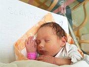 KLÁRA SLAVÍČKOVÁ, KRALUPY NAD VLTAVOU. Narodila se 19. ledna 2018. Po porodu vážila 2,95 kg a měřila 47 cm. Rodiče jsou Alžběta a Jakub Slavíčkovi. (porodnice Slaný)