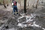 Hořelo na ploše 1,2 hektaru.