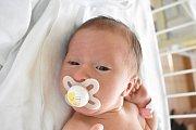 VANESA TREBATICKÁ, KLADNO. Narodila se 6. dubna 2018. Po porodu vážila 2,9 kg a měřila 48 cm. Rodiče jsou Katarína Mihalíková a Roman Trebatický. (porodnice Kladno)