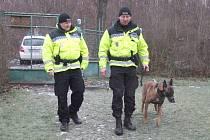 HLÍDKY MĚSTSKÉ POLICIE KLADNO se v prostorách zahrádkářských kolonií pohybují nepravidelně přes den i v noci.