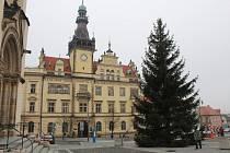 Kladenské náměstí Starosty Pavla loni zdobil sedmnáctimetrový smrk dovezený z osady Toskánka.