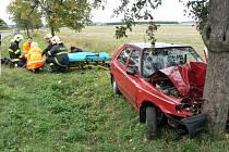 Řidička nabourala do stromu.
