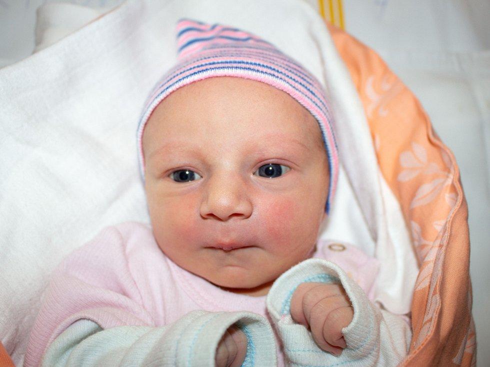 ADÉLA FRYČOVÁ, CÍTOV. Narodila se 9. listopadu 2019. Po porodu vážila 3 kg a měřila 49 cm. Rodiče jsou Miluše Fryčová a Jan Fryč. (porodnice Slaný)