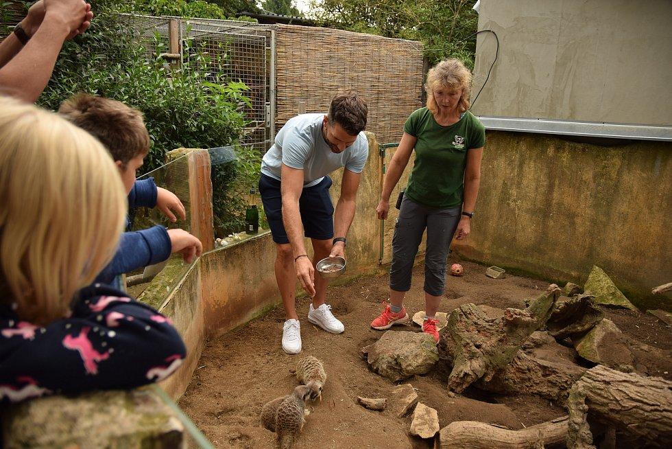 Trojčata surikat v Zooparku Zájezd pokřtil moderátor Nasty.