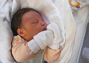 Alexandr Gervas, Zlosyň. Narodil se 28. března 2017. Váha 3,69 kg, míra 51 cm. Rodiče jsou Lilie a Nikolaj Gervas (porodnice Slaný).