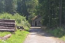 Brány bezmála dvouhektarového lesa se otevírají veřejnosti.