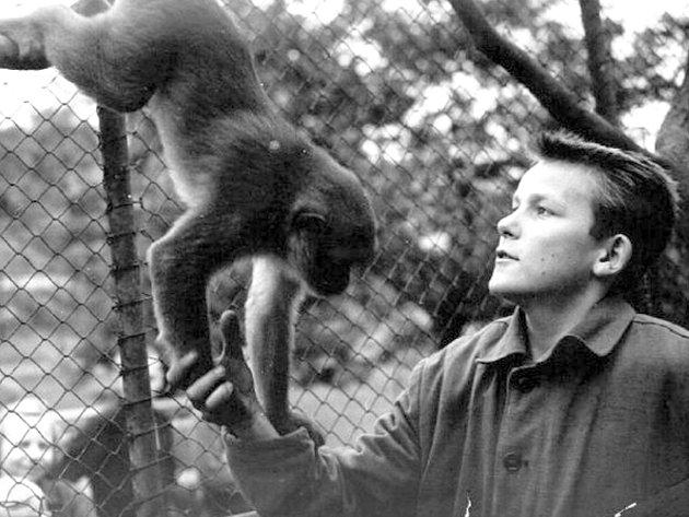 Bývala kladenská zoologická bude obnovena. Živá zvířata však nahradí exponáty z keramiky.