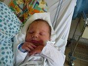 Karel Oesterreicher, Libčice nad Vltavou. Narodil se 28. října 2012, váha 4,11 kg, míra 53 cm. Rodiče jsou Helena a Karel Oesterreicherovi. (porodnice Kladno)