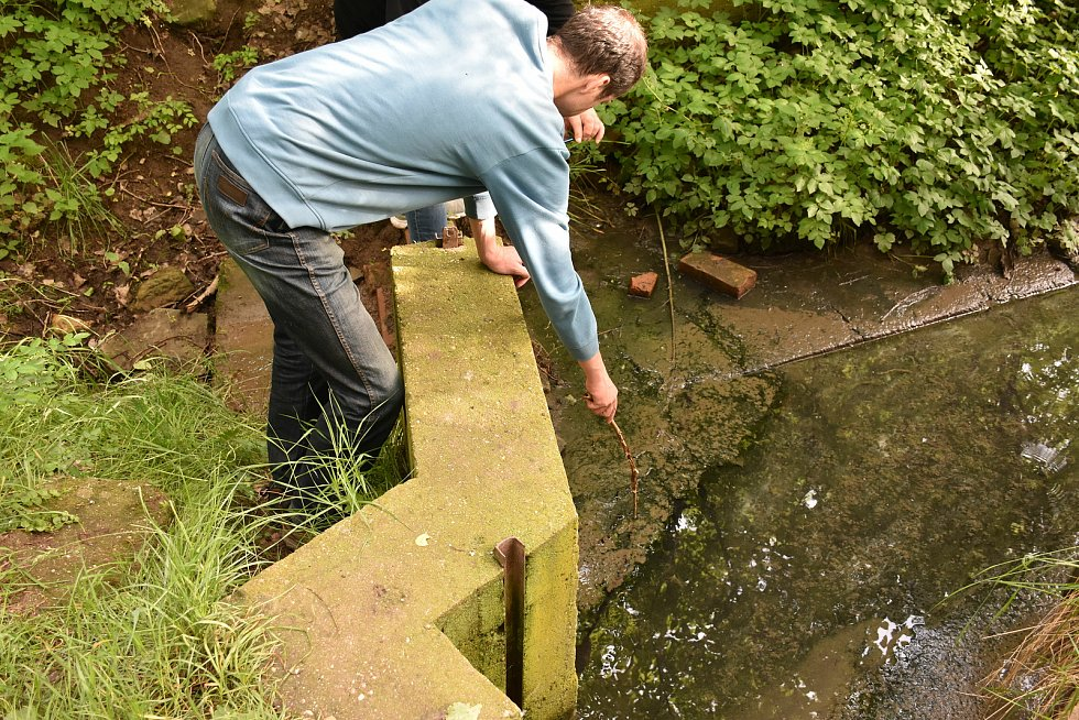 Do rybníka Tesla se valila znečištěná voda z čističky ze Studeněvsi.