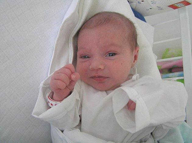 Karolína Lopata, Smečno, 17.2.2010, váha 3 kg, míra 47 cm, rodiče jsou Inna Lopata a Jan Baštýř, porodnice Kladno
