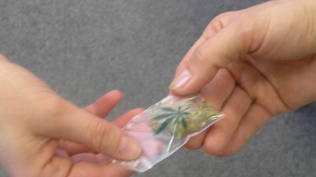 Marihuanu jsme dokázali koupit hned v prvním podniku v centru města.