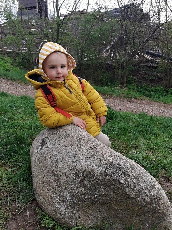 Do zooparku míří rodiny i v chladném počasí.