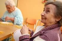 KRAJSKÁ RADA seniorů Středočeského kraje začne od listopadu poskytovat seniorům poradenství týkající se bytové problematiky a sociálních otázek.