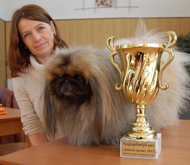 Imposant a chovatelka Katka Kaválková ze Stehelčevsi s pohárem nejúspěšnějšího psa loňské výstavní sezóny.