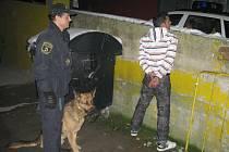 Pachatelé byli dopadeni za několik minut. Za napadení a znásilnění hrozí cizincům za mřížemi až deset let.
