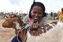 Také lidé z Kladenska obdarovali prostřednictvím Člověka v tísni chudé v zemích třetího světa.