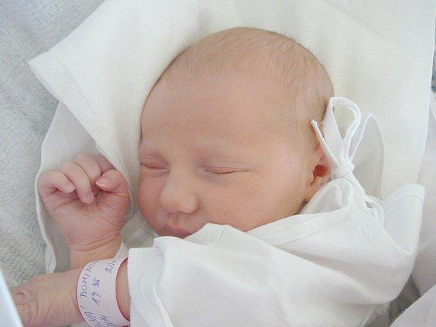 Dominika Vševidová, Libušín. Narodila se 8. dubna 2014. Váha 3,27 kg, míra 49 cm. Rodiče jsou Lenka Vševidová a Tomáš Rác (porodnice Kladno).