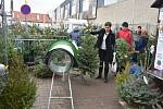 Prodej vánočních stromků ve Slaném.
