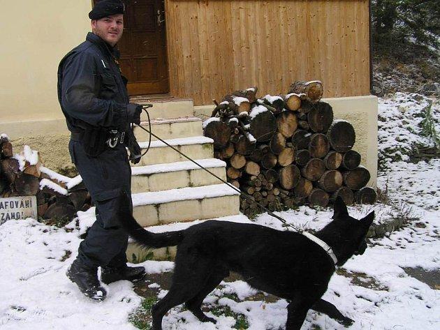 Prevence je jedním ze způsobů ochrany chat před zloději. Například na Kladensku policisté vyrážejí celoročně na kontrolu chatových oblastí se psy, někdy využívají i vrtulník s termovizí. Naposledy provedli bezpečnostní akci mezi chatami minulý týden.