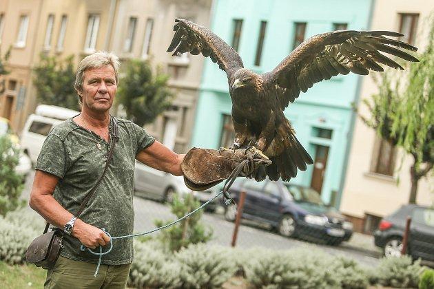 Chovatel samice orla skalního Jiří Sábl ze Slaného na Kladensku.