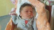 ALŽBĚTA RUDLEOVÁ, SLANÝ Narodila se 16. dubna 2018. Po porodu vážila 3,6 kg a měřila 48 cm. Rodiče jsou Katarína Rudleová a Jan Rudle. Bráška Jan.