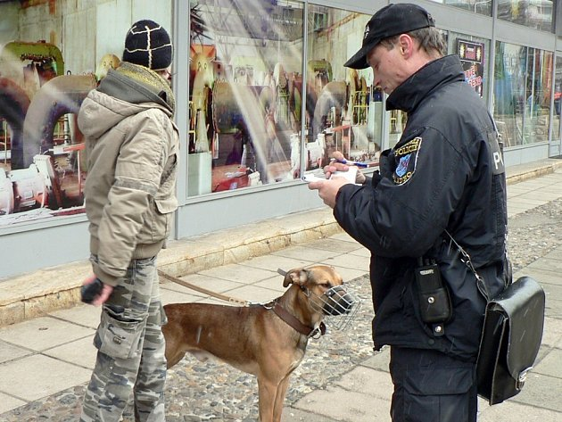 Pokuty za znečišťování nebo volné pobíhání psů strážníci udělují denně. Navíc prý nedbalé majitele finančně nešetří.