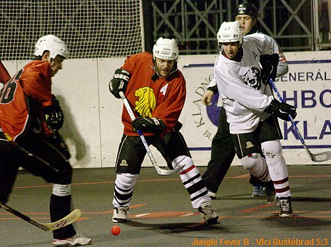 Jungle Fever B - HC Vlci Buštěhrad 5:3 (29.11.2008)