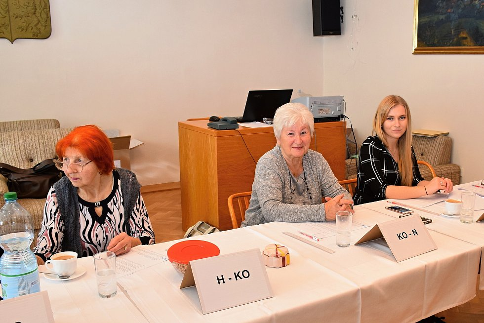 Volby do Evropského parlamentu v Družci.