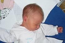 Michaela Fidranská, Kralupy nad Vltavou. Narodila se 30. prosince.  Váha 3,37 kg a míra 51 cm. Rodiče jsou Eva a Aleš Fidranští. (porodnice Kladno)