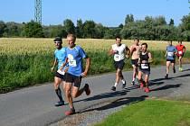 Běžci při výběhu na haldu u Tuchlovic.