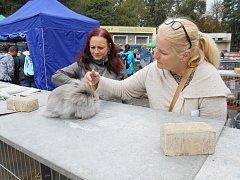 Výstava drobného zvířectva v areálu Modelářského střediska ve Slaném ve Smečenské ulici.