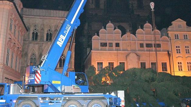 Smrk ztepilý bude na soukromé zahradě v zatím neznámé obci pokácen v neděli 20. listopadu.