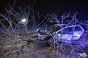 Opilý cizinec narazil u Kladna do stromu.
