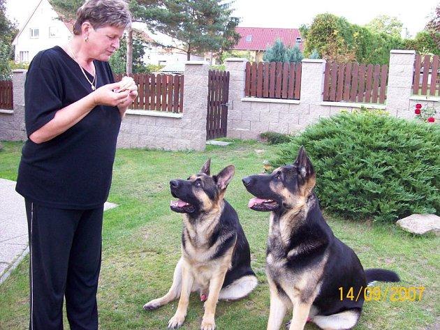 Rex a Agar Ivany Jiráskové z Doks pojistku nemají. Rodina jim přesto věnuje maximální péči a veterináře navštěvují pravidelně. Pojištění je dobrá věc, ale ne každý si ho může dovolit, stejně jako drahé operace.