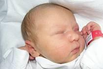 Eliška Nováková, Kladno. Narodila se 26. února 2012, váha 3,23 kg, míra 48 cm. Rodiče jsou Tereza Nováková a Martin Dohelský. (porodnice Kladno)