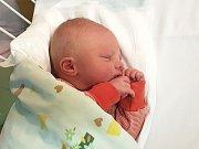 JAN ŠTROJSA, KLADNO. Narodil se 6. listopadu 2018. Po porodu vážil 3,65 kg a měřil 51 cm. Rodiče jsou Michaela a Jan Štrojsovi. (porodnice Kladno)