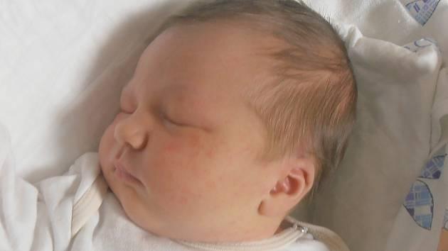 Bella Schwab, Pletený Újezd. Narodila se 5. prosince 2016. Váha 3,88 kg, míra 51 cm. Rodiče jsou Tereza a Petr Schwab (porodnice Slaný).
