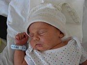 VOJTĚCH JENČÍK, KLADNO. Narodil se 13. dubna 2019. Po porodu vážil 3,21 kg a měřil 48 cm. Rodiče jsou Jiřina Jenčíková a Emil Danko. (porodnice Kladno)