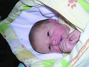 Sára Bavolárová, Velvary. Narodila se 24. dubna 2012, váha 2,95 kg, míra 49 cm. Rodiče jsou Petra Zíchová a Matouš Bavolár. (porodnice Slaný)