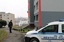 SLÁNŠTÍ STRÁŽNÍCI hlídkovali od neděle před domem v Okružní ulici, aby se dovnitř nedostaly přes zákaz nepovolané osoby.